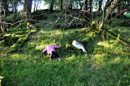 Aberhyddnant Farm Cottages: kids after long walk