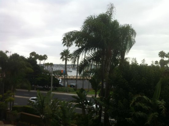 Marina del Rey Marriott: Dalla stanza