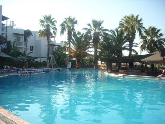 Parkim Ayaz Hotel: cozzy bar