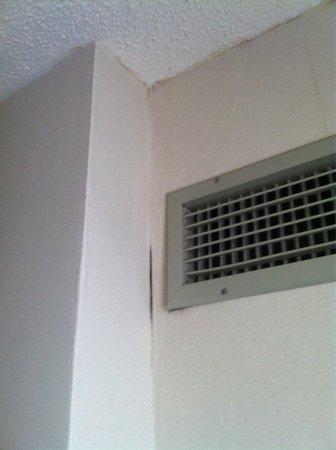 Cambridge Suites - Sydney: Traces d'humidité ?