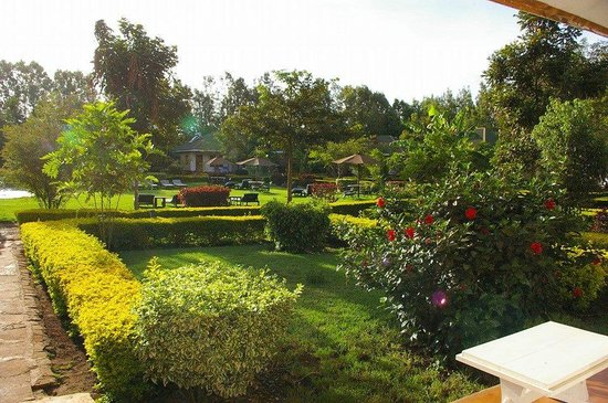 Country Lodge : Hotel grounds