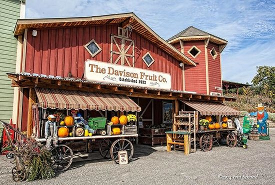 Davison Orchards Country Village: The Davison Fruit Co.