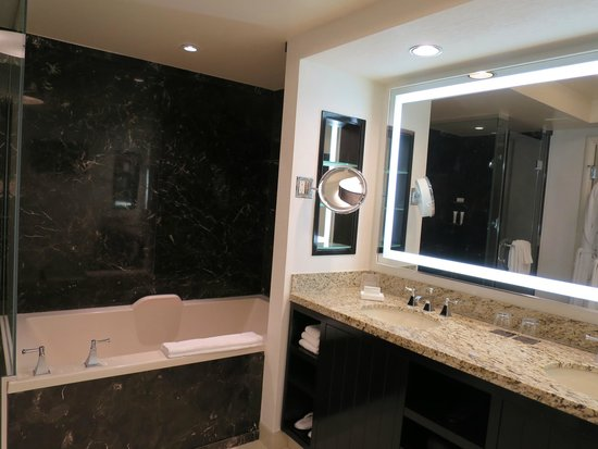 Delano Las Vegas Bathroom Is Similiar To Existing Thehotel Setup