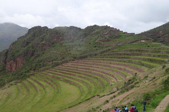 Heiliges Tal der Inka (Urubamba-Tal): Inca terraces