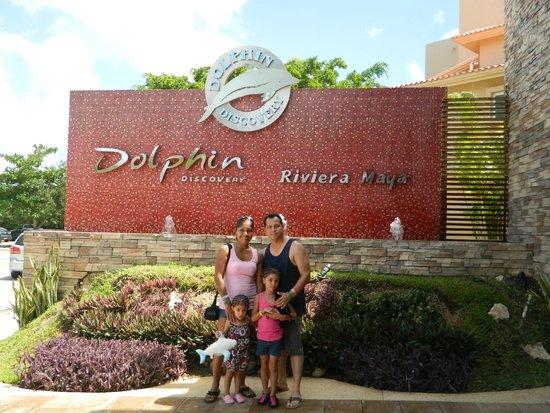 Dolphin Discovery Puerto Aventuras: Lo mejor en nado con Delfines!!!