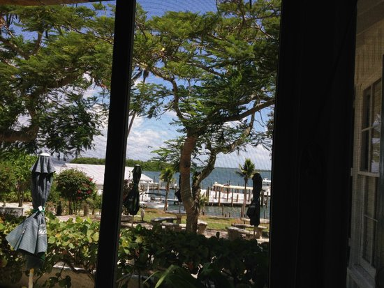 Cabbage Key Inn: view from table in restaurant…lovely