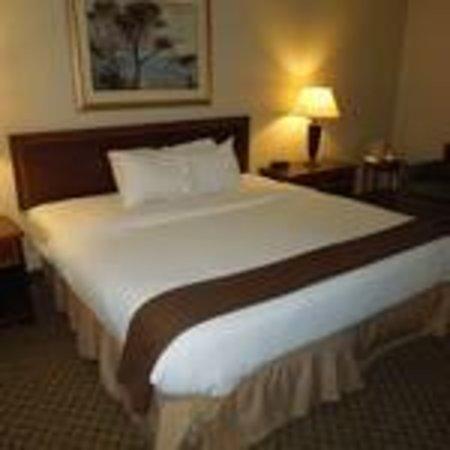 Ramada Plaza Dayton: King Suite Bedroom