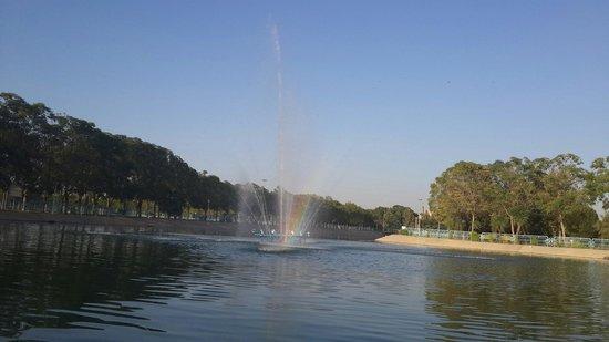 Sami Abdulrahman Park: Sami park lake
