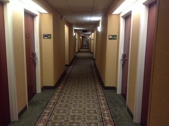 Hampton Inn Dayton/Huber Heights : WELL lit & decorated hallways !!