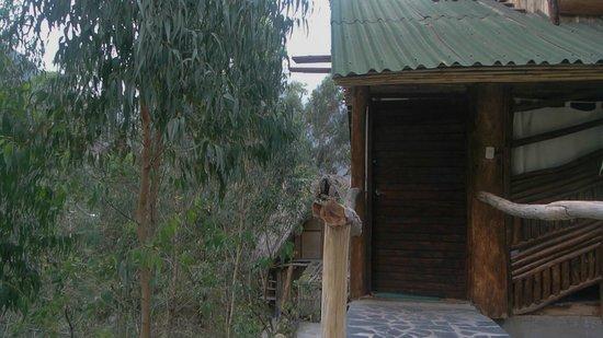 Eco Quechua Lodge: entrance to the room