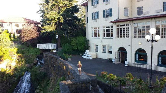 Columbia Gorge Hotel : Waterfall