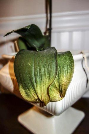 Agate Cove Inn Hotel: welcome flower in room
