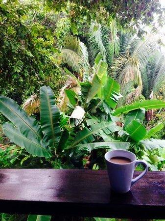 TikiVillas Rainforest Lodge & Spa : coffee on villa veranda