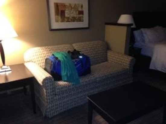 Holiday Inn Express & Suites El Paso Airport Area: Couch/pullout bed