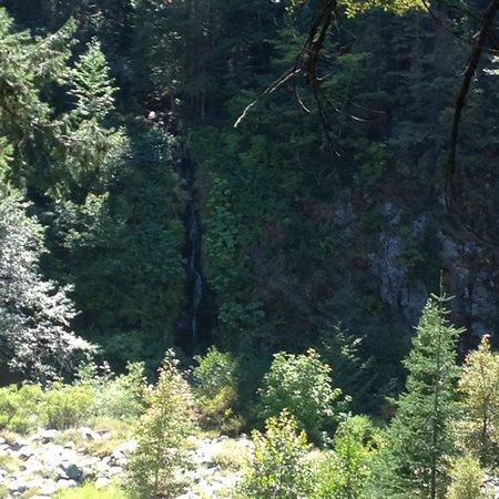 Herrington's Sierra Pines Resort: Balcony view. Room 18