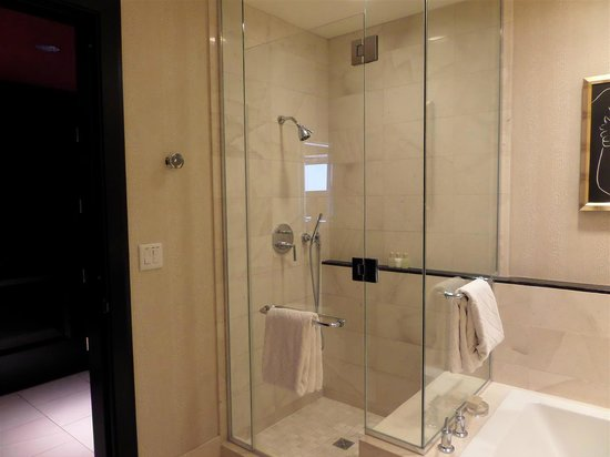 Large stand up shower and large bathtub - Picture of Encore At Wynn ...