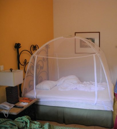 bett mit unserem moskitonetz bild von hotel villa mercedes palenque palenque tripadvisor. Black Bedroom Furniture Sets. Home Design Ideas