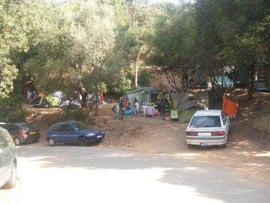 Camping U Libecciu: emplacement