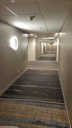 Renaissance Phoenix Downtown Hotel: Hall