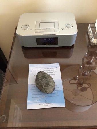 Four Seasons Hotel Vancouver: 石って珍しいですよね
