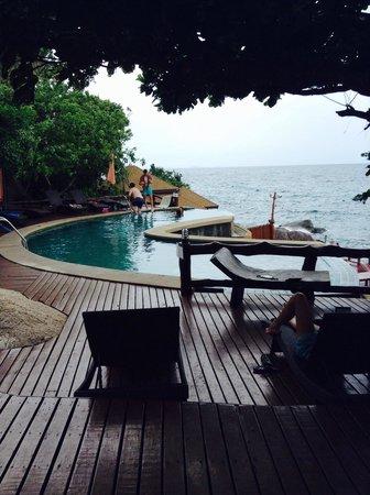 Dusit Buncha Resort: Super small swimming pool.