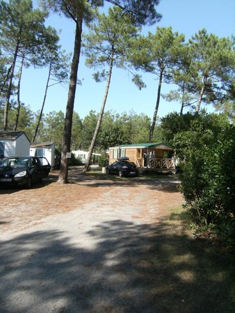 Camping La Pineda : les mobilhoms,bungalows