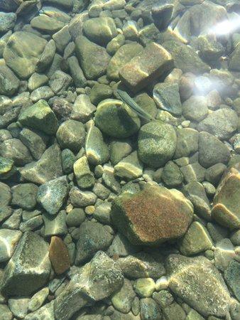 Princess Beach: C'est génial pour voir des poissons !