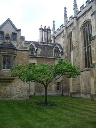 University of Cambridge : Кембридж