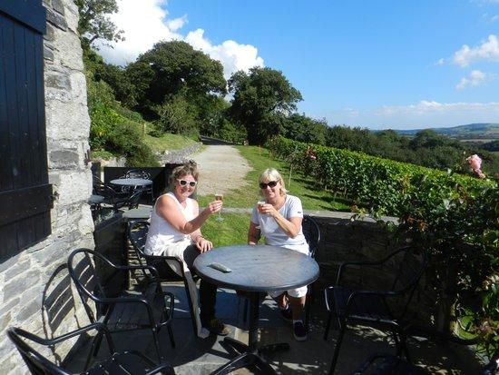 Camel Valley Vineyard: the wine