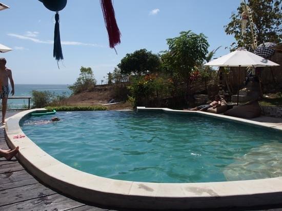Milo's Home: piscine et vue au loin