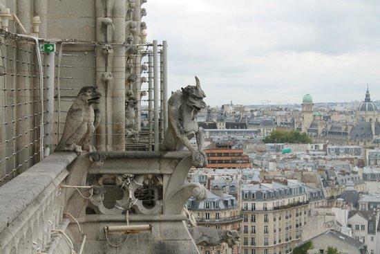 Tours de la Cathedrale Notre-Dame : Gargoyle protecting the Church