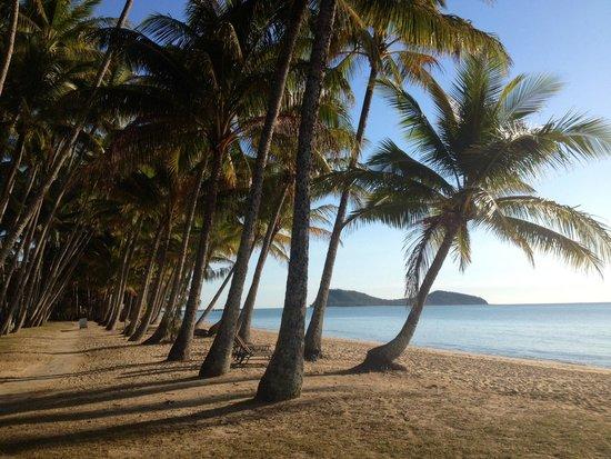 Alamanda Palm Cove by Lancemore : Paradise at Palm Cove