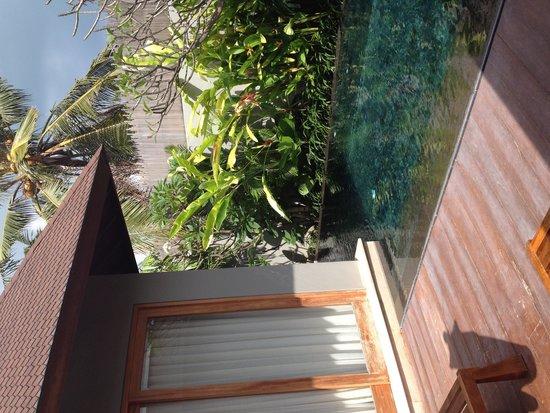 KoenoKoeni Villa: Pool/deck
