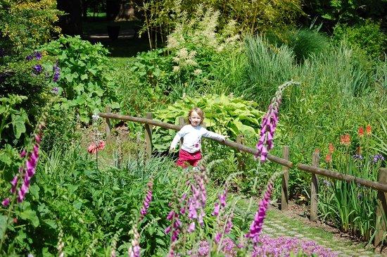 jardin botanique de metz ltang - Jardin Botanique Metz