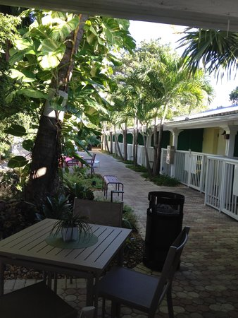 Almond Tree Inn : Rooms