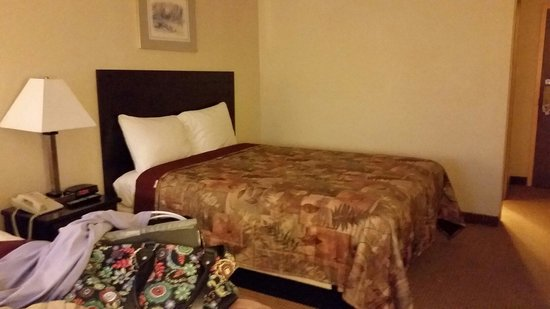 Econo Lodge: Comfy beds