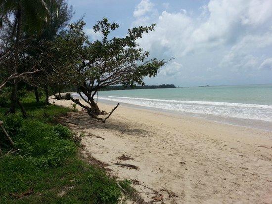 Kantary Beach Hotel Villas & Suites Khao Lak: Strand nach links