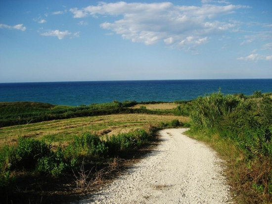 Villa Marianna : Stradina che conduce alla spiaggia di mottagrossa
