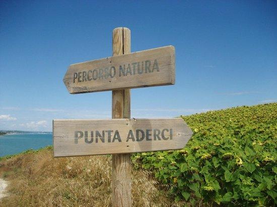 Villa Marianna : Riserva di Punta Aderci