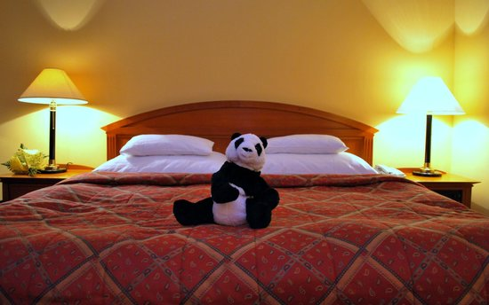 Hotel Savoy: Trippie the travelpanda enjoyed the Savoy and will be back