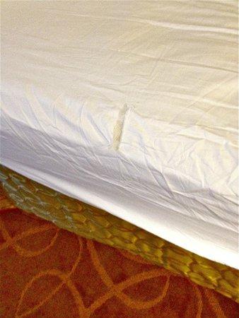 Renaissance Cleveland Hotel: Ripped sheet