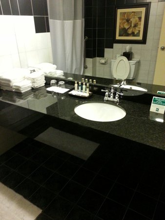 Quality Inn & Conference Centre Downtown : Clean modern bathroom