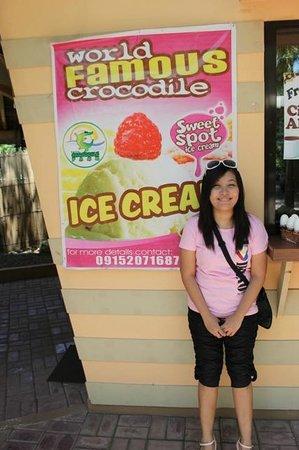 Crocodile Park: Crocodile Ice Cream