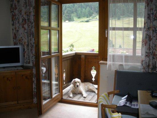 Hotel Post: vistas al bosque desdel la habitación