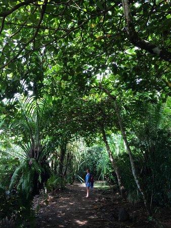 Finca Maresia: El lugar más virgen de toda Costa Rica!