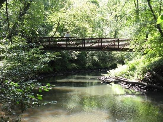 Bridge over creek at Medoc Mountain State Park