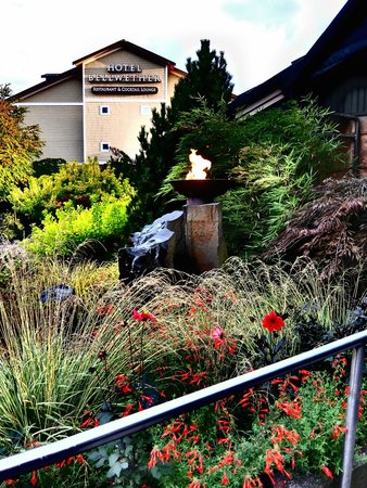 Anthony's Hearthfire Grill ~ Squalicum Harbor: The garden and the Bellwether Hotel