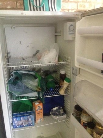 Cairns City Backpackers: le frigo