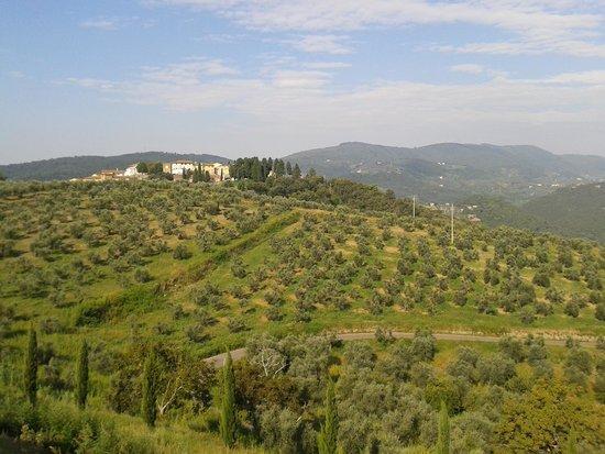 Hotel Paggeria Medicea: paesaggio da giardino colazioni