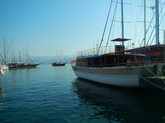 Yacht Boutique Hotel : яхты на побережье